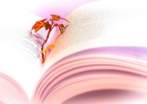 book-literature